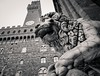 Lion with Palazzo Vecchio (ejjiv) Tags: florence sculpture lion italy