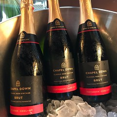 IMG_4128 (theminty) Tags: beverlyhills chapeldownwinery wine sparklingwine rosewine theminty themintycom wineluncheon lunch