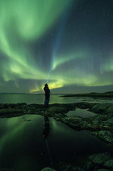 The aurora (B_Olsen) Tags: auroraborealis northernlights nordlys seascape nightscape longexposure nightsky reflections nature arctic arcticlights sjursvika senja norway nikon810a nightphoto