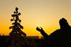 catching the last rays of sunshine (VisitLakeland) Tags: sunset winter evening tree nature sun ray siluethe shadow sky puu ilta auringonlasku kuopio finland