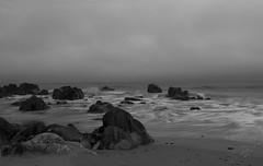 (Patrick Coscoran) Tags: wexford beach sea water black white ireland seascape