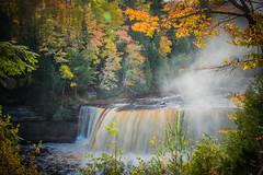 Tahquamenon Falls (**Explored**) (LadyDragonflyCC - >;<) Tags: waterfall fall tahquamenon upper penninsula michigan nature leaves tannen vertical birthday upperfalls statepark explore 2017 forest