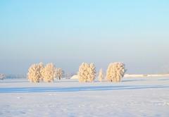 Beautiful snow (Tobi_2008) Tags: winter schnee snow landschaft landscape himmel sky sachsen saxony deutschland germany allemagne germania diamondclassphotographer platinumheartaward
