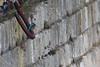 Winter Kingfisher (2) (markkilner) Tags: canon eos 80d dslr kent england kilner televue tv60 televue60 manualfocus telescope apo primefocus nature wildlife winterwatch bird kingfisher alcedoatthis ramsgate harbour coast thanet