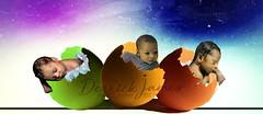 #derrickjamesphotography (derrickjames2) Tags: djpeggbabies vababyphotographer djpbabyeggs babyeggs babyphotographer babyphotography baby derrickjamesphotography