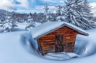 Chalet dans son écrin de neige - La Feclaz