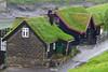 °Leynar 1 (J.Legov) Tags: gras leynar streymoy färöer inseln dänisch færøerne jlegov