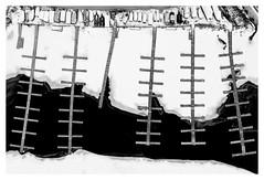 Docks in Winter (bprice0715) Tags: dji djip4a djiphantom4advanced phantom aerial aerialphotography drone dronephotography fineart blackandwhite blackwhite bw docks boatdocks monochrome mono shapes lines snow winter saratoga saratogalake patterns