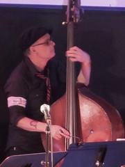 Devin Hoff (michaelz1) Tags: livemusic thechapel sanfrancisco sfsketchfest royaltenanbaums soundtrack