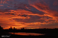 Consolation Sunrise_T3W3403 (Alfred J. Lockwood Photography) Tags: alfredjlockwood nature morning twilight sunrise ontario canada reflection pond silhouette clouds sky autumn