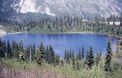 Lake Louise, Mount Ranier National Park, Washington (Mary Gillham Archive Project) Tags: 1987 87246 lakelouise landscape mountraniernationalpark planttree usa washington water