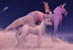 Dreaming Big (SunTvilling) Tags: jinx waterhorse bento birchteeth jian unicorn alicorn maitreya truthhair alchemy