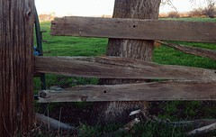 Makeshift (TheAramet) Tags: photo asymmetrical wood boards fence trunk country