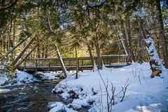 Bridge Over Icy Water . . . (Dr. Farnsworth) Tags: bridge conservation trail snow water icy valleyroad rapidriver fernridge sevenbridges mi michigan winter february2018