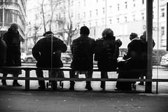 The Socialites 168.365 (ewitsoe) Tags: pedestrians canon eos6dii winter waiting poeple warsaw polska poland warszawa stret city urban blackandwhite monochrome bnw analog traffic 168 365