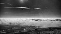 Face to the ocean (ZeGaby) Tags: blackandwhite champagne clouds landscapes naturephotography paysages pentax35mm pentaxk1 vignes vignobles vineyards mutigny grandest france fr