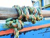 In a knot (dreamincontrast) Tags: dreamincontrast dreamincontrastportfolio boddam harbour boats sea fishing dream contrast scotland uk aberdeenshire winter 2018 buchan orange green blue yellow rope ropes fish boat