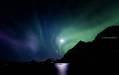 Chasing the Northern Lights in the Lofoten Islands, Norway (monsieur I) Tags: lofotenislands iced articcircle winter travel north chasinglights lofoten nature moon norwegian monsieuri norway northernlights