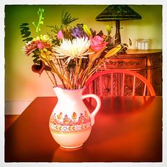 Flowers (Timothy Valentine) Tags: 0218 clichésaturday flowers large stilllife 2018 attleboro massachusetts unitedstates us square