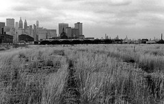 Waves of golden weeds grace the abandoned Central Railroad Terminal as nature slowly and inevitably takes over what were once massive railroad yards. Lower Manhattan looms across the Hudson River. Jersey City. March 1975 (wavz13) Tags: oldphotographs oldphotos 1970sphotographs 1970sphotos oldphotography 1970sphotography newyorkphotographs newyorkphotos oldnewyorkphotography oldnewyorkphotos vintagenewyork vintagemanhattan vintagenewyorkphotography vintagenewyorkphotographs vintagenewyorkphotos oldbuildings abandonedbuildings railroadphotos railroadphotography railroads vintagerailroads vintagerailroadphotography oldrailroads oldrailroadphotography vintagebuildings 19thcenturybuildings depressing bleak noir noire dark oldtrainstations vintagetrainstations antiquetrainstations abandonedtrainstations oldtrainterminals vintagetrainterminals antiquetrainterminals abandonedtrainterminals jerseycityphotographs jerseycityphotos oldjerseycityphotography oldjerseycityphotos oldjerseycity vintagejerseycity vintagejerseycityphotography jerseycityhistory urbandecay urbanwasteland urbanblight libertystatepark newjerseyhistory newyorkskyline manhattanskyline