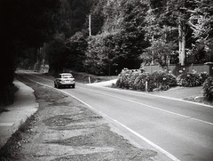 Mount Dandenong Tourist Road (Matthew Paul Argall) Tags: jcpenneyelectronicstrobepocketcamera 110 110film fixedfocus focusfree blackandwhite blackandwhitefilm grainyfilm subminiaturefilm lomographyfilm road street mountdandenong mountdandenongtouristroad yarraranges 100speedfilm 100isofilm