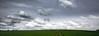Hold the Line please! (Beppe Rijs) Tags: deutschland germany schleswigholstein schlei wolken wolkendecke landschaft landscape natur nature field feld gras baum tree horizont horizon grün green clouds farbig colored line rural ländlich pastell fertile fruchtbar freshly color farbe acker track