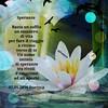 Speranze (Poetyca) Tags: featured image immagini e poesie sfumature poetiche poesia