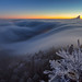 Belchenflue fog wave 2
