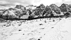 Valley of the Ten Peaks (Rae-J09) Tags: valley mountains blackandwhite monochrome bw landscape banffnationalpark morainelake rockymountains rockies path contrast peaks glacier larchvalley canada alberta canon 7d 1635mm