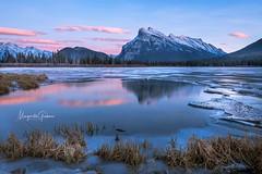 Vermillion Lake Sunset (Margarita Genkova) Tags: banffnationalpark alberta canada vermillionlakes nature winter ice colours sunset beauty