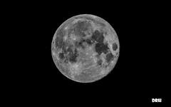 Super Moon (davidrhall1234) Tags: moon super space coth5