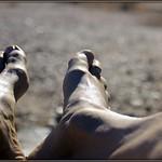 Warm Feet thumbnail