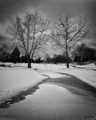 A Cold Walk (zachary.locks) Tags: 52frames black cold creek curve curvy dreary frozen gloomy ice leading lines moody river s snow trees water white winter zlocks