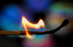 It's better to burn out than fade away (dianne_stankiewicz) Tags: fire match burn hmm macromondays flame light