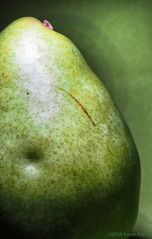 Imperfect (Karen Fayeth) Tags: delicious food green pear rainbow gritty grunge speckled fruit bright light art fun color imperfect brown stem bruise dent dimple