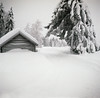 Old house and old camera (steffos1986) Tags: nature landscape vintage mediumformat agfajesolette kodak kodakektar film analog analogue squareformat 6x6 house snow ice winter norway norge noruega norwegen white foldingcamera
