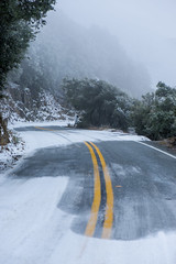 Snow day in San Jose (KurteeQue) Tags: snow sanjose road yellow trees street nature mountain side nikon fog mist