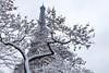 snow in Paris (julialarrigue) Tags: eiffeltower paris eiffel white