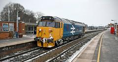 50049 through Market Harborough (robmcrorie) Tags: 50049 class 50 large br logo train rail railway snow market harborough 0z99 nikon d7500