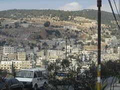 Siria_Jordania 496 (alida_j) Tags: siria jordania viajes orientemedio
