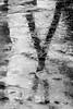 Spot is marked (Paul Henman) Tags: toronto torontophotowalks paulhenman topw2018rs ontario maintowoodbinephotowalk paulhenmanphotographyca httppaulhenmanphotographyca 2018 topw blackandwhite reflection