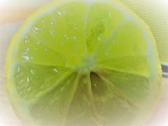 fresh lemon (C.AL.) Tags: lemon citric citrus macromondays citrico limon canon