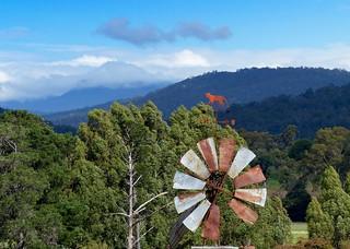 The Rusty/rustic Tasmanian Tiger Windmill
