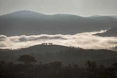 Sierra de Andujar - Andalusia - Spain (wietsej) Tags: sierra de andujar andalusia spain landscape sunrise sony rx10 iv rx10m4 fog mist nature rx10iv