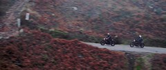 Winter Ride 2018 - 03 (Fabio MB) Tags: winter ride trip tonup café racer moto motorcycle cold mountain nature tracker bobber portugal road crew freedom escape