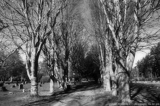 2018-02-12 Grand View Cemetery (02) (B&W) (1024x680)