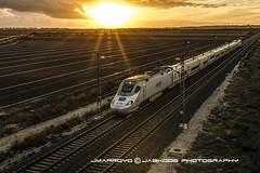 SUNSET EXPRESS (José Mª Arroyo) Tags: jabkdos jmarroyo jab josémªarroyo elpuertodesantamaría trenes tren ave altavelocidad atardecer sunset ferrocarril adif renfe