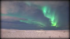 Bright curls (Iceland) (armxesde) Tags: pentax ricoh k3 island iceland northernlights polarlights polarlichter nordlichter auroraborealis winter schnee snow green grün sky himmel stern star