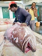 Fisherman Cleaning His Catch in Castara, Tobago (deemixx) Tags: fish fisher fishing fisherman tobago caribbean