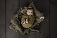 Beatrice Rose, 25 days new (Natalie Webb Photography) Tags: tamron2470g2 tamronsp2470divcusdg2 newbornphotography newborn baby tamronlens tamron d810 nikond810 nikon
